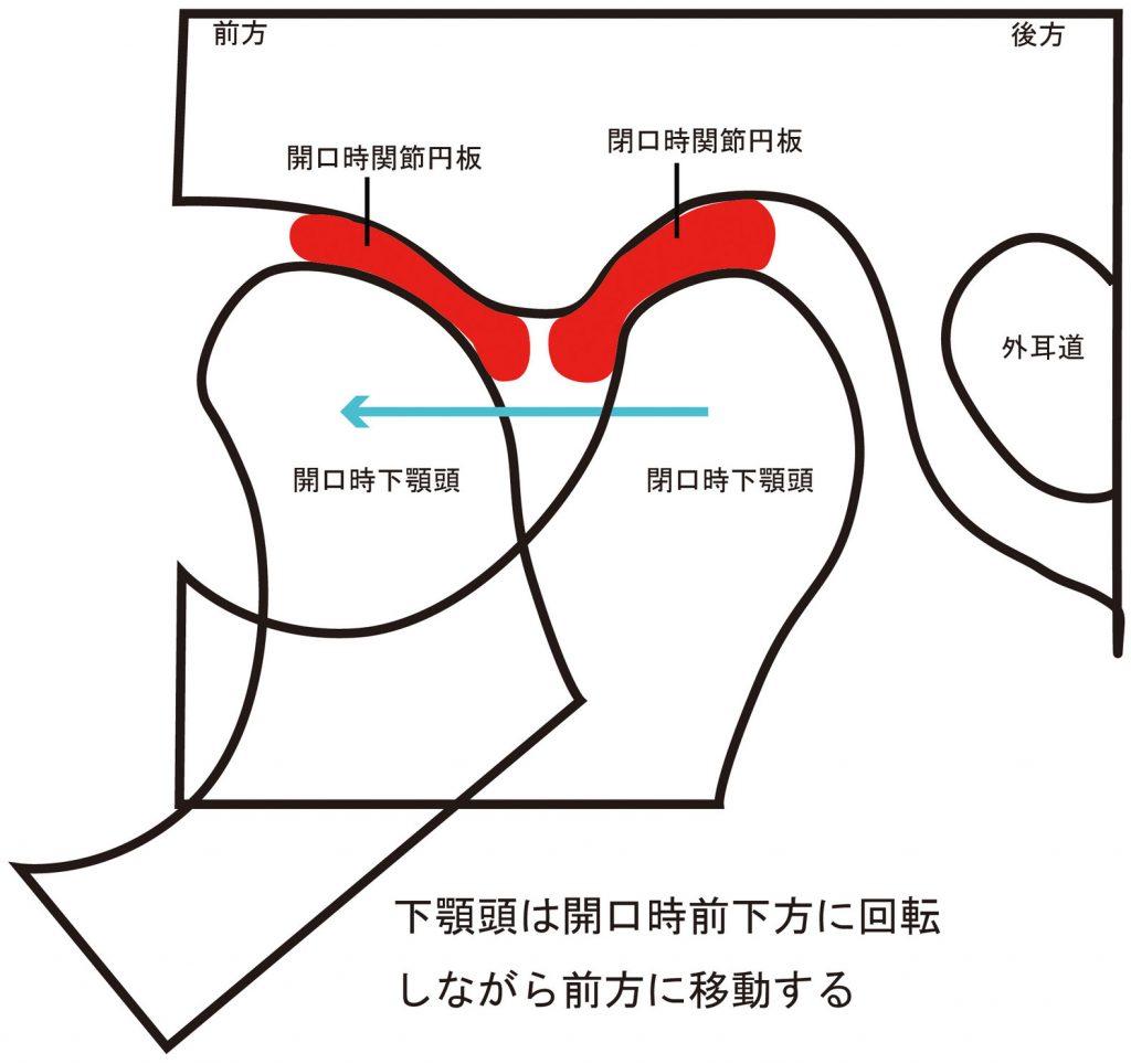 脱臼 顎 関節